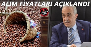FINDIK ÜRETİCİSİ ŞOKTA!